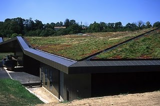 Energy and Environmental Roof Design
