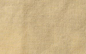 Plain Weave in Fabric